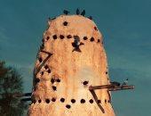 """""""ريم"""" من رشيد تشارك صحافة المواطن صورة برج حمام بمحافظة البحيرة"""