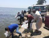 إلقاء 73 مليون وحدة زريعة بالبحيرات المصرية منها 4 ملايين بالبرلس.. صور