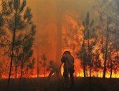 مصر تعزى أسر الضحايا الأتراك بحرائق الغابات.. وتؤكد تضامنها مع الشعب التركى