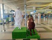 """مجسمات """"خروف وجزار"""" تضفى جوا من البهجة في مطار القاهرة .. صور"""