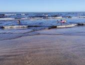 مياه البحر تتحول إلى اللون الأسود ببورسعيد بسبب بقعة زيتية.. فيديو وصور