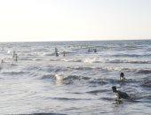 المياه تعود لطبيعتها بشاطئ المناخ فى بورسعيد وبدء اختفاء البقعة الزيتية.. فيديو
