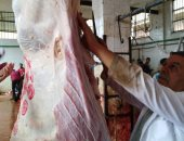 بيطرى الغربية: ذبح 158 أضحية مجانا للمواطنين فى ثالث أيام العيد بالقرى