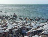 غرق 15 شابا بالإسكندرية بالعيد ورفع الرايات الحمراء لحماية الزائرين.. فيديو