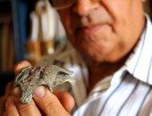 """""""جد"""" التماسيح الحالية.. علماء يكتشفون حفرية لتمساح عمره 150 مليون عام"""