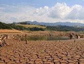 الجفاف كارثة تدمر البرازيل.. نقص هطول الأمطار يهدد محطات الطاقة الكهرومائية مع أسوأ أزمة مياه منذ 1931.. الجفاف التاريخى يقلص إنتاج البن البرازيلى ويرفع أسعار القهوة لأعلى مستوى.. ويعمق الأزمة الاقتصادية