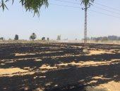 حريق يلتهم قش القمح بأرض زراعية في الإسماعيلية.. فيديو وصور