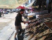 مملكة الفوسفور بدمياط.. اعرف أنواع وأسعار السمك من أكبر سوق في رأس البر.. لايف