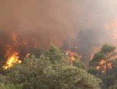 الإذاعة الجزائرية: 30 سنة سجن للمتورطين فى الحرق العمد للغابات