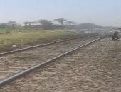 مصرع سيدة صدمها قطار خلال عبورها السكة الحديد فى الحوامدية
