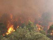 وزارة الدفاع الجزائرية: استشهاد 18 عسكريا إثر حرائق غابات تيزى وزو وبجاية