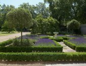 """جولة فى حدائق """"كلارنس هاوس"""".. صممها الأمير تشارلز بنفسه تخليدًا لذكرى جدته"""