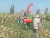 الزراعة تزيل حقول إنتاج تقاوى الذرة الشامية مجهولة المصدر فى الدقهلية والبحيرة
