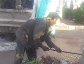 رفع أطنان من المخلفات الصلبة والقمامة فى حملات نظافة بأحياء الأقصر.. صور