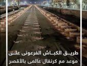 طريق الكباش الفرعونى على موعد مع كرنفال عالمى بالأقصر.. فيديو