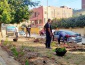 الشرقية تتجمل بتكثيف أعمال النظافة والتجميل بمداخل وشوارع المدن.. صور