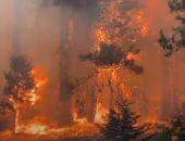 إجلاء سكان جزيرة وابية اليونانية من منازلهم بسبب إندلاع حرائق غابات