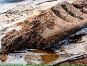 علماء الآثار يكتشفون تمثالًا خشبيًا من العصر الحديدى فى أيرلندا