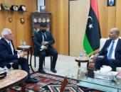 """مسئول أوروبى يشيد بجهود """"الرئاسى الليبى"""" فى التصدى للهجرة غير الشرعية"""