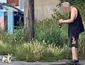 """بريطاني يعيش مع 50 قطة شارع والجيران يحتجون: """"ظروف معيشتهم سيئة"""" .. صور"""