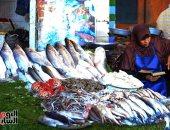 أسعار الأسماك فى سوق العبور للجملة اليوم.. البلطى المزارع يبدأ من 18 جنيها