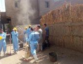 أسيوط تشارك فى اليوم العالمى للنظافة بحملات وندوات توعية وزراعة أشجار