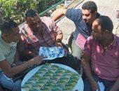 ضبط بطاقات تموينية داخل أحد المخابز بمنطقة أبيس شرق الإسكندرية.. صور