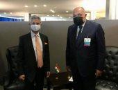 سامح شكرى يبحث مع وزير خارجية الهند القضايا محل الاهتمام المتبادل