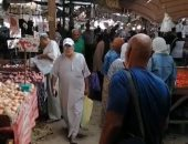 الطماطم بـ6.5 جنيه فى سوق الخضروات بمحافظة السويس.. فيديو