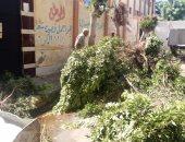 تكثيف أعمال نظافة ورش وتعقيم محيط المدارس بالإسكندرية