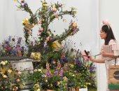 لكل لون معنى ومغنى.. معرض الزهور فى تشيلسى يستقبل الخريف بأجمل الألوان