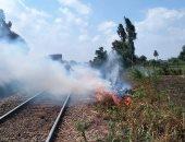 السيطرة على حريق ببوص على شريط السكة الحديد فى المنوفية.. صور