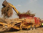 إعادة استخدامها كعلف وسماد عضوى.. اعرف ضوابط التخلص من المخلفات الزراعية