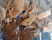 الزراعة تعلن اكتشاف بؤر جديدة للنمل الأبيض شرق الإسكندرية