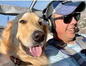 """""""جاس ودورا"""" كلبان يعيشان حياة مرهفة بمشاركة صاحبهما رحلاته بطائرة خاصة.. صور"""