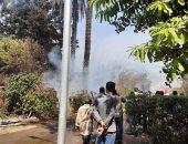 الحماية المدنية بالقليوبية تسيطر على حريق بأشجار تابعة لوزارة الزراعة بالقناطر
