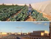 التجمعات التنموية تعيد الحياة لصحراء سيناء.. 11 مجتمعا بوسط أرض الفيروز و7 بوديان الجنوب.. وتوفير مسكن على مساحة 200 متر مع خمسة أفدنة لكل منتفع.. وجميع الوحدات كاملة المرافق والتجهيزات.. صور