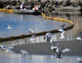 خفر السواحل الأمريكى يحقق فى تسرب عشرات الآلاف من جالونات النفط قبالة كاليفورنيا