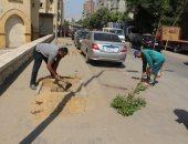 محافظة القاهرة تجمل حى السيدة زينب بأيدى عمال هيئة النظافة.. صور