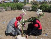 """""""شهيدنا حى"""" مبادرة لزراعة الأشجار وإطلاق أسماء الشهداء لتخليد ذكراهم بكفر الشيخ"""