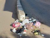 شكوى من عدم تواجد صناديق لجمع القمامة فى صان الحجر بالشرقية.. والمحافظة ترد