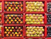 مشروع شبابى لبيع الفاكهة بشكل جديد على الإنترنت في الدقهلية.. صور