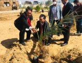 سفيرا إندونيسيا والمغرب يزرعان شجر النخيل في الوادي الجديد