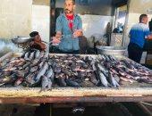 الجمبرى بـ40 جنيها.. انخفاض سعر السمك بسوق الجمعة بالإسماعيلية.. فيديو وصور