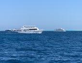 شاهد الرحلات البحرية المتجه لجزيرة الجفتون ومواقع الغوص بالغردقة.. صور وفيديو