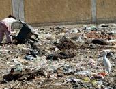 """بالفيديو.. حى شرق شبرا الخيمة يرفع المخلفات بالشوارع استعدادً لـ""""عيد الفطر"""""""