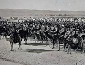 محاربون بأجنحة وذوات الأربع.. كيف لعبت الحيوانات دورا بالحرب العالمية الأولى؟