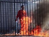 صلاح حسن رشيد يكتب: كيف قضت مصر على التتار؟!