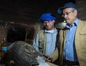 بالصور.. البعثات الدولية تواصل البحث عن الاكتشافات الأثرية بأسوان
