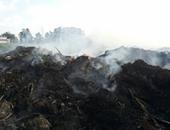 البيئة : محافظات منظومة قش الارز تواصل التصدى لنوبات تلوث الهواء الحادة